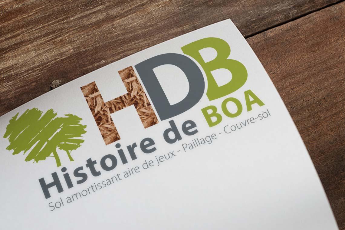Histoire de Boa